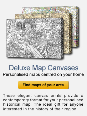 Deluxe Map Canvases - historical Maps of your Home